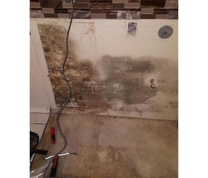 Mold Damage in Walnut, CA Before