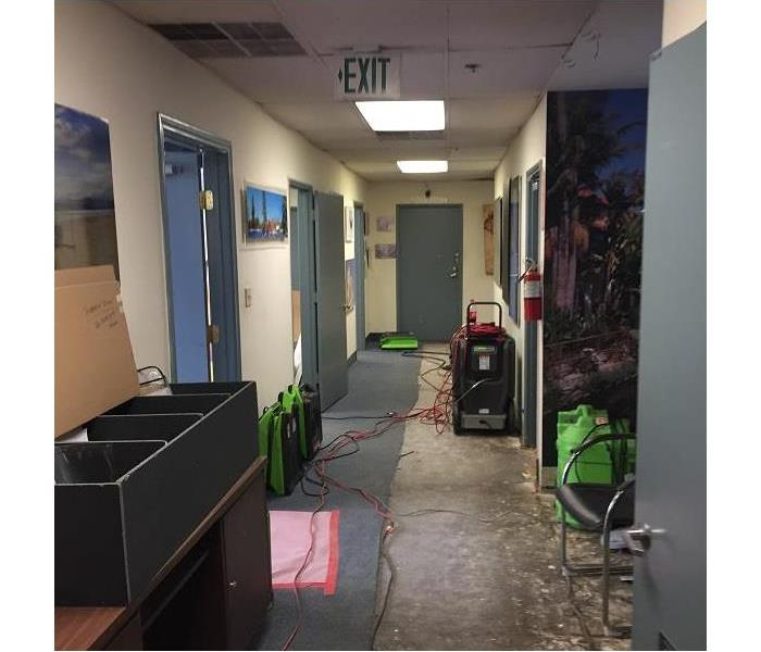 Sprinkler System Leak in Los Angeles, CA