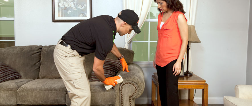 Hacienda Heights, CA carpet upholstery cleaning